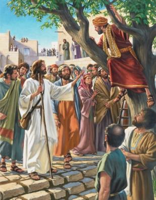 JesusZacchaeus